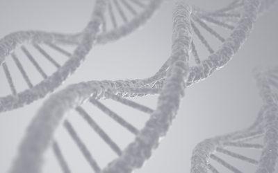 ¿Existen los genes del tabaco y el alcohol?